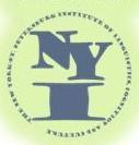 New York - St. Petersburg Institute